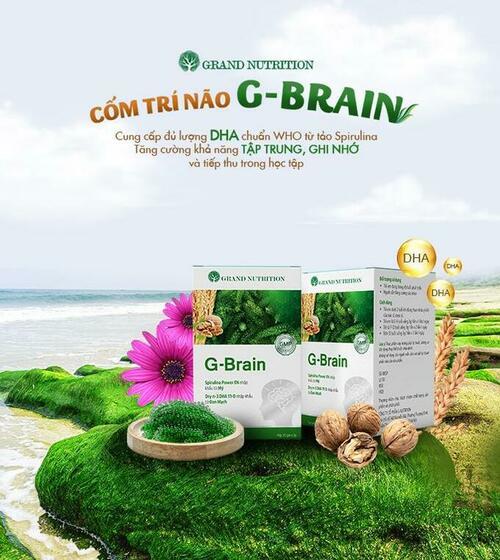 review-đánh-giá-cốm-trí-não-G-Brain-4