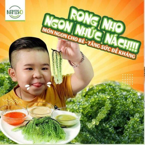 rong-nho-namiso-co-tot-khong